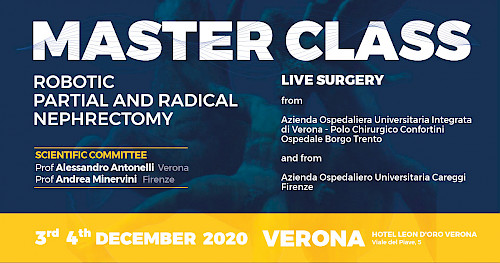 MASTER CLASS - ROBOTIC PARTIAL AND RADICAL  NEPHRECTOMY (copy)
